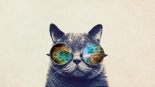33841_funny_funny_cat_with_big_glasses